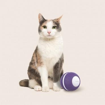[앱코] 오엘라 고양이 자동 롤링볼